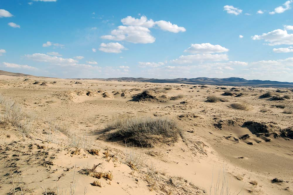 The north Gobi is a few hours from Ulaan Batur and are the closest sand dunes to the capital.