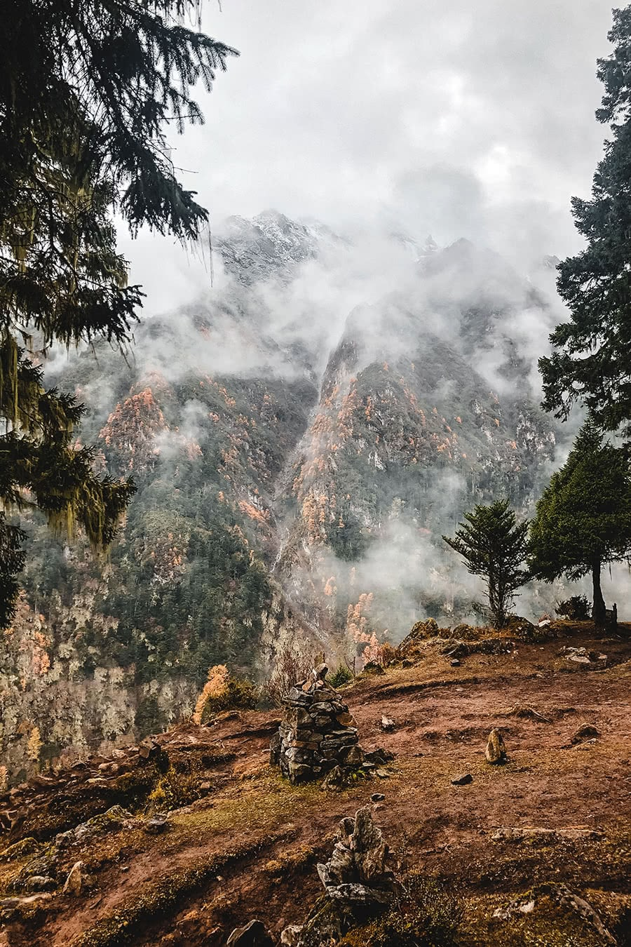 Beautiful scenery along the trek between Laya and Gasa in Bhutan .