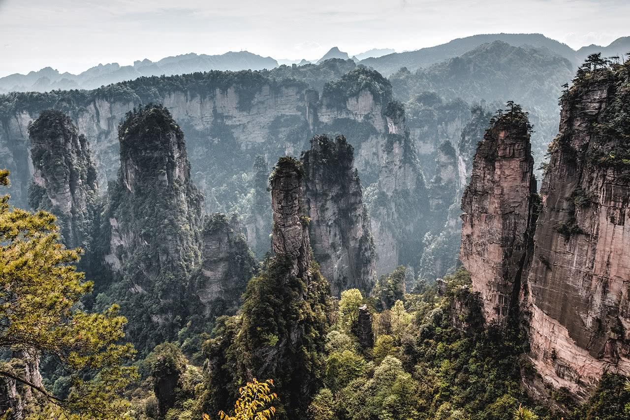 Quartzite-sandstone pillars of Zhangjiajie's Wulingyuan Scenic Area.