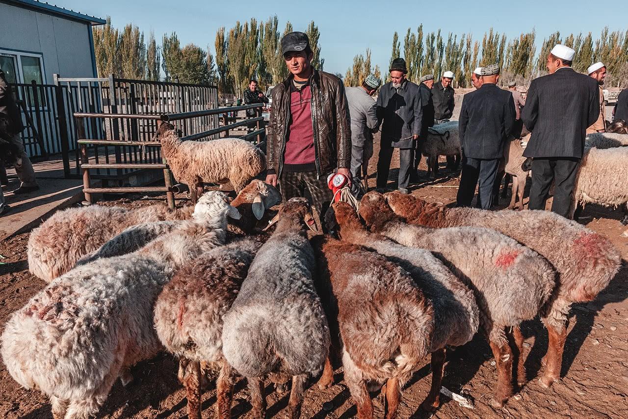 A Uyghur man at the Yekshenba Livestock Market in Kashgar, China.