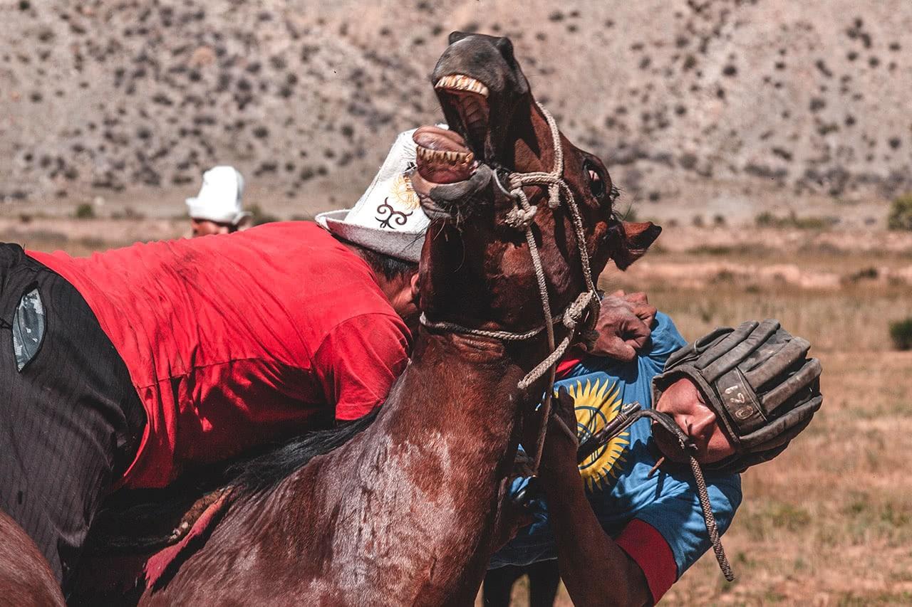 Buzkashi, also known locally a Ulak Tartysh match in Kyrgyzstan.