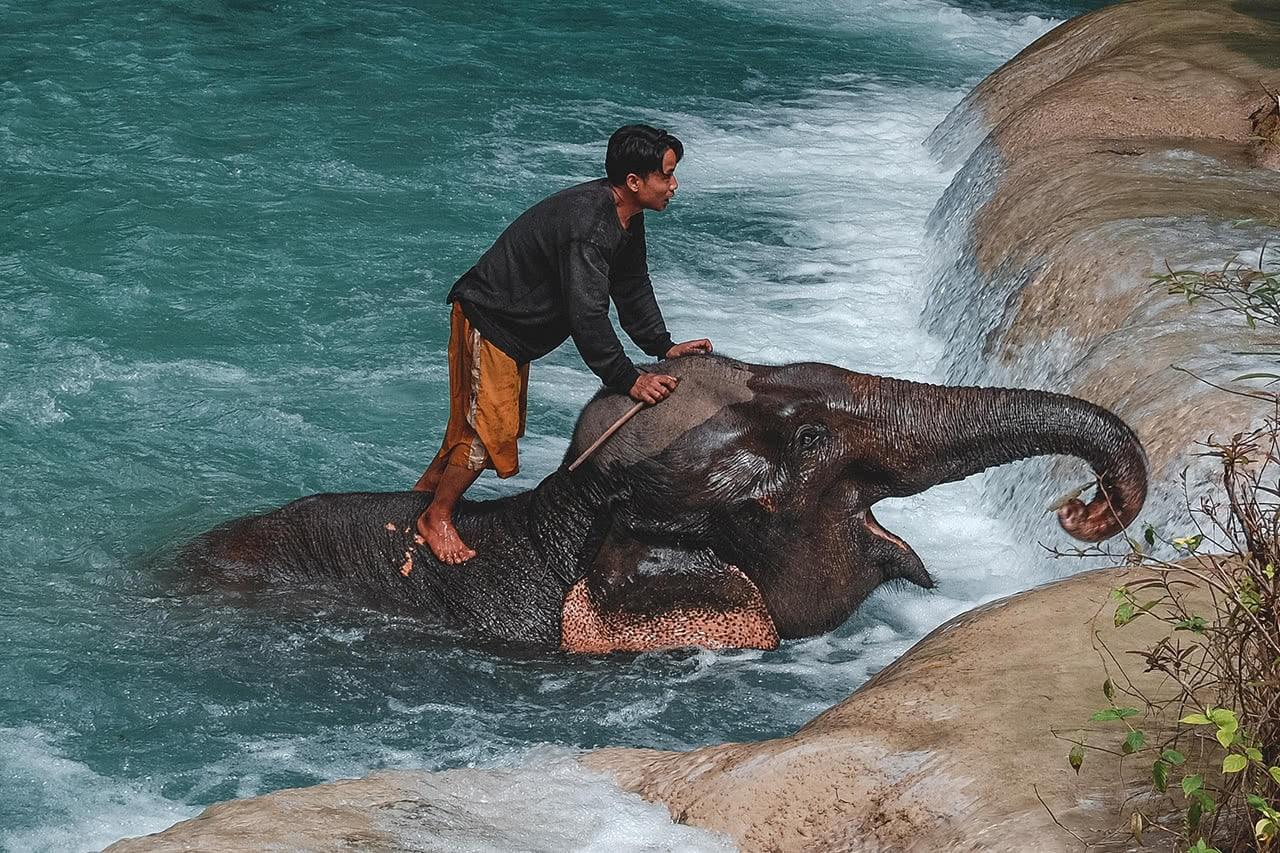 A mahout baths his elephant near Luang Prabang, Laos.