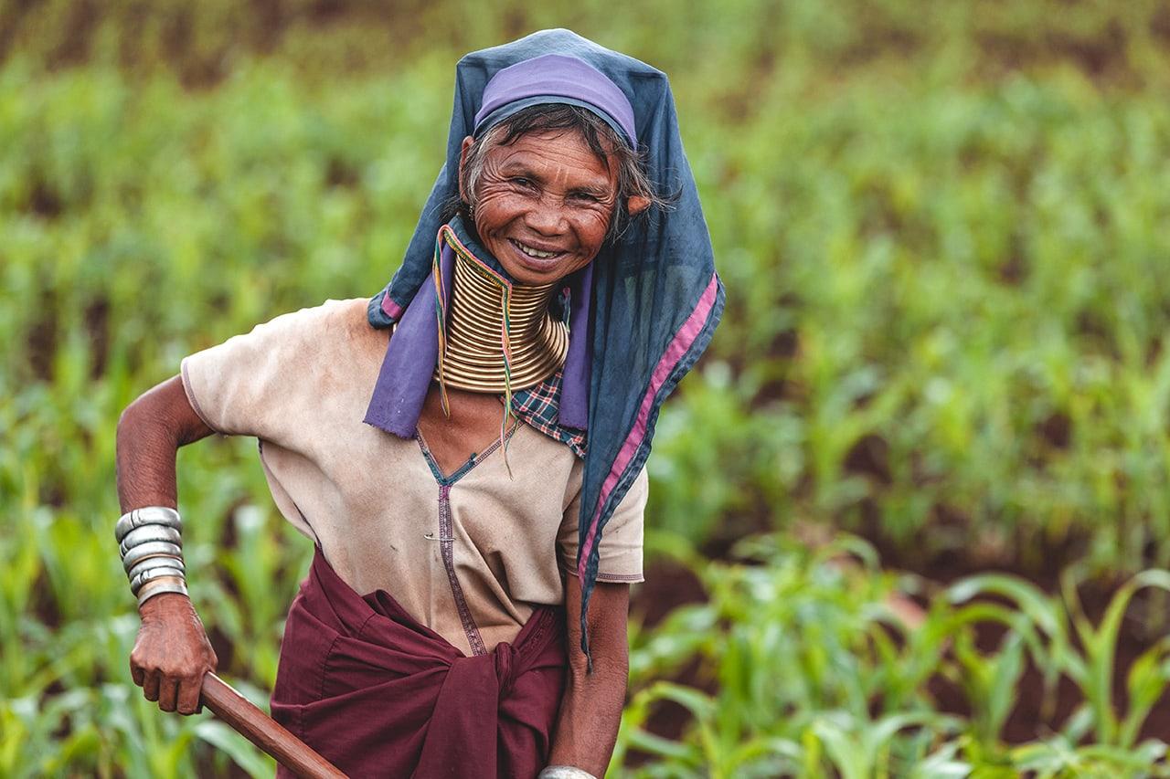 A Kayan Longneck woman working in her field at Panpet village, Myanmar.