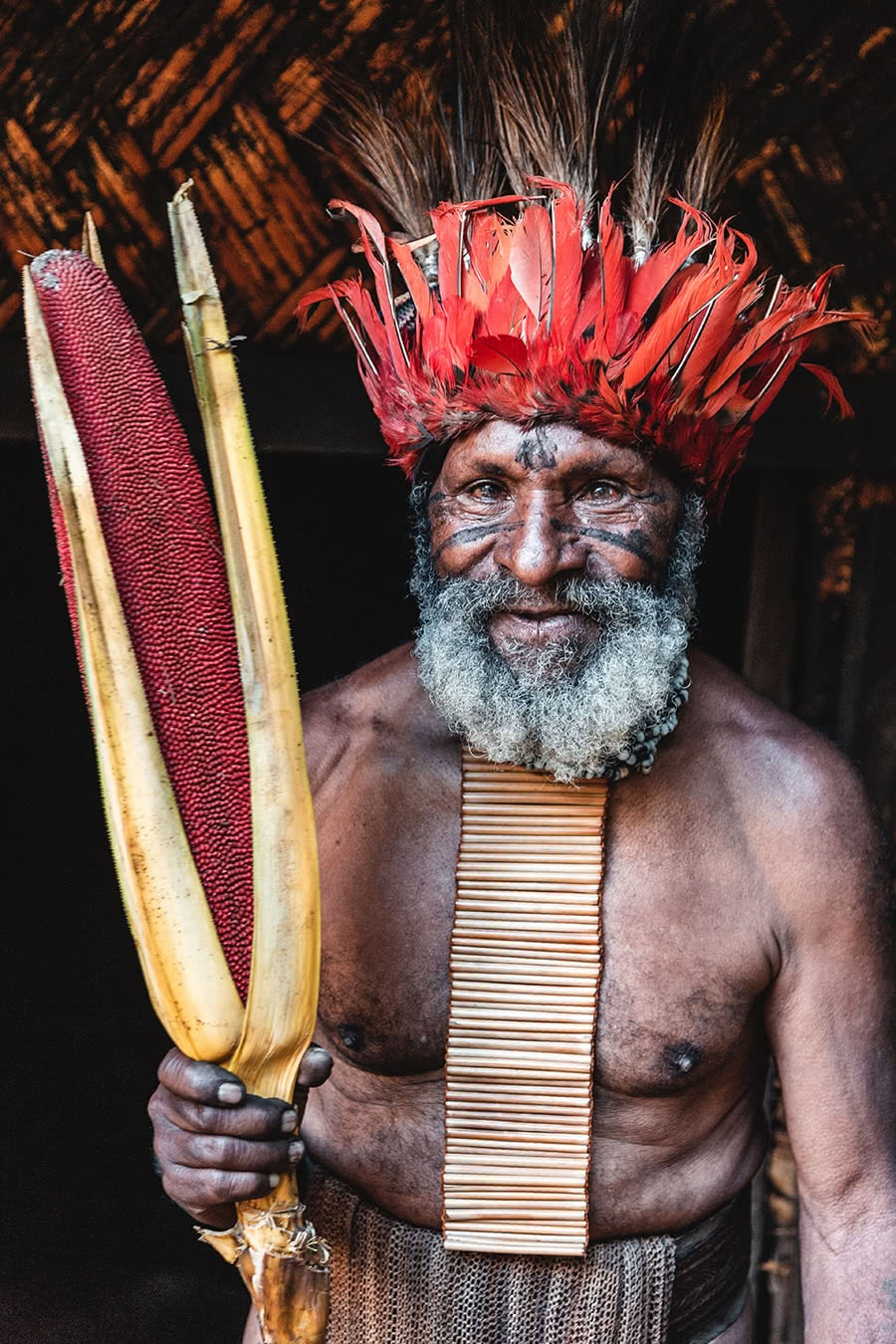 A man from the Nogopa tribe in Tokua village, near Mount Hagen, Papua New Guinea.