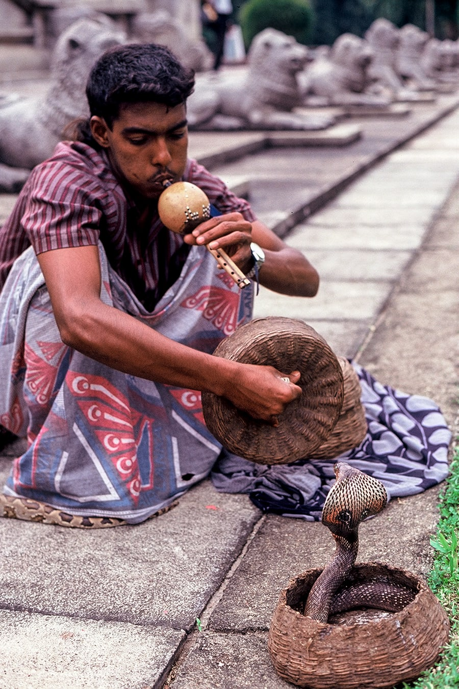 Snake charmer on the streets of Colombo, Sri Lanka.