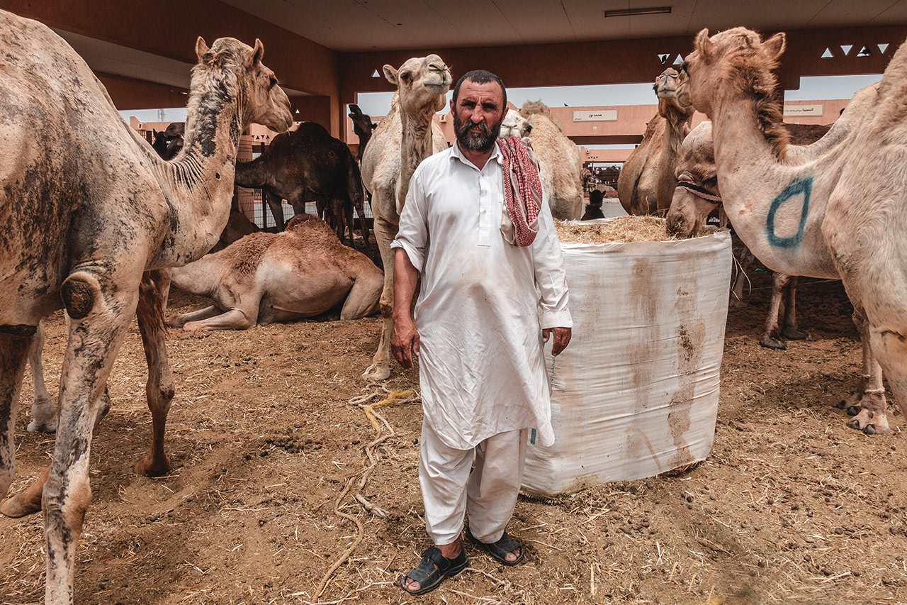 An Afghan worker at the Al Ain camel market.