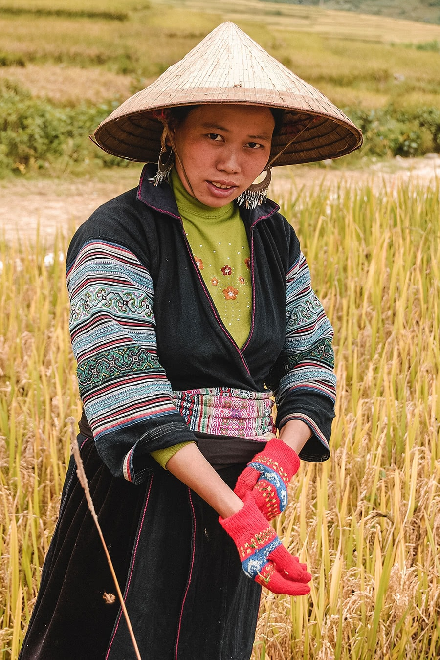 A Vietnamese woman working in the rice field in Sapa.
